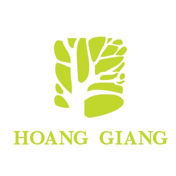 Hoang Giang Salesteam